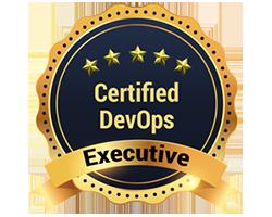 Certified DevOps Executive Course Online