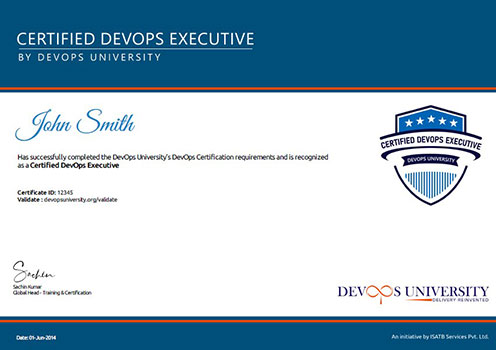 Certified DevOps Executive Certification