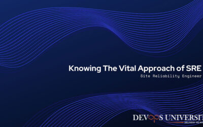 Knowing The Vital Approach of SRE