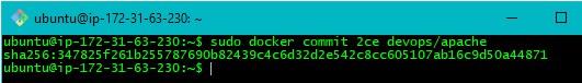 Step12 Docker Use Case for Implementation