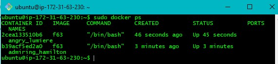 Step5 Docker Use Case for Implementation
